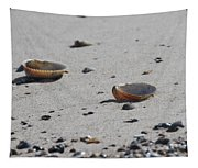 Cockle Shells On Little Island Tapestry