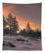 Cold Morning Tapestry