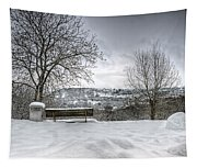 Cold Seat With A View Tapestry