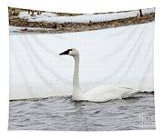 Cold Swim Tapestry