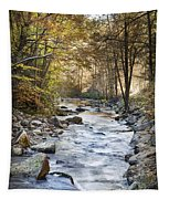 Cold Water Tapestry