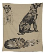 Collie, Retriever, Alstian And Keeshund Tapestry