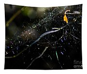 Color Dots Spider Net Tapestry