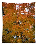 Color Of Fall Tapestry