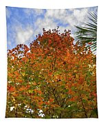 Color To The Sky Tapestry