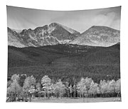 Colorado America's Playground In Black And White Tapestry