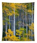 Colorado Fall Color Tapestry