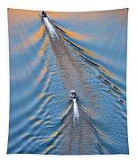 Colorado River Arizona Tapestry