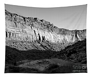 Colorado River Cliff Bw Tapestry