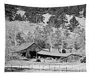 Colorado Rocky Mountain Barn Bw Tapestry