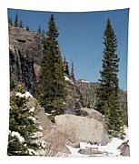 Colorado - Rocky Mountain National Park 01 Tapestry