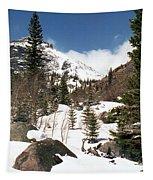 Colorado - Rocky Mountain National Park 02 Tapestry