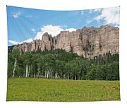 Colorado Side Of The Four Corners Area Tapestry