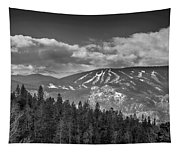 Colorado Ski Slopes In Black And White Tapestry