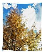 Colorado Sky Tapestry