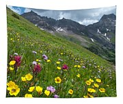 Colorado Wildflowers And Mountains Tapestry