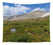 Colorado's Mt. Audoban Tapestry