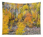 Colorful Autumn Forest In The Canyon Of Cottonwood Pass Tapestry