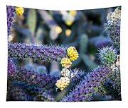 Colorful Cactus Red Purple Green Yellow Plant Fine Art Photography Print  Tapestry