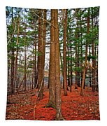 Colorful Carolina Forest Tapestry