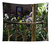 Colorful Macaw And Other Birds At The Jurong Bird Park In Singapore Tapestry