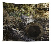 Colorful Resting Place Tapestry