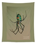 Colorful Spider In The Swamp Tapestry
