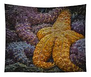 Colorful Starfish Tapestry