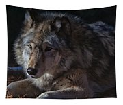 Colors Of A Wolf Tapestry