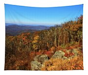 Colors Of Autumn In Shenandoah National Park Tapestry