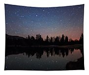 Colors Of Night Tapestry