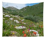 Colors Of The Rainbow - Colorado Mountain Summer Tapestry