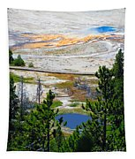 Colors Of Yellowstone Tapestry