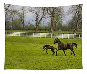 Colt Tapestry