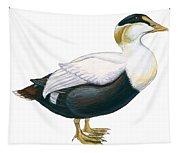 Common Eider Tapestry