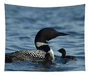 Common Loon Family Tapestry