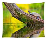 Common Map Turtle Tapestry