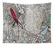 Common Red Bug Along The Seti River Road-nepal  Tapestry