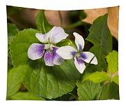 Common Violet Tapestry
