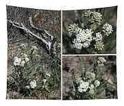Common Yarrow Collage Tapestry