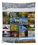 Composite Of Photographs From Various Tapestry