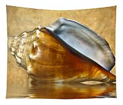 Conch 2 Tapestry