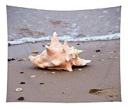 Conch Tapestry