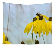 Coneflower And Bee 2  Tapestry