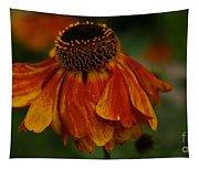 Coneflower Tapestry