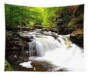 Conestoga Falls Tapestry