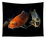 Confrontation Of 3 Koi Tapestry