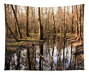 Congaree Reflections Tapestry