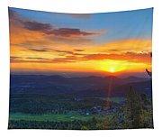 Conifer Sunrise Tapestry