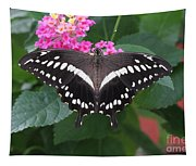 Constantines Swallowtail Tapestry